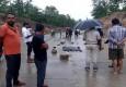 ಉಮರಿಯಾದಲ್ಲಿ ರಾಷ್ಟ್ರೀಯ ಹೆದ್ದಾರಿ ದಾಟುತ್ತಿದ್ದ ಹುಲಿ ವಾಹನ ಗುದ್ದಿ ಮೃತ